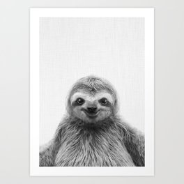Young Sloth Art Print