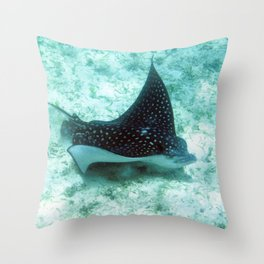 Watercolor Ray, Spotted Eagle Ray 36, St John, USVI Throw Pillow