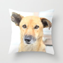 Floppy Ear Puppy Throw Pillow