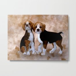 Young Beagle Metal Print