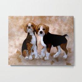 Young Beagle Metal Print