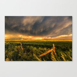 Breadbasket - Golden Light Illuminates Fence and Field in Kansas Canvas Print