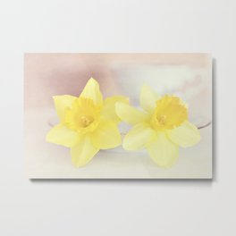 Buttercream Daffs Metal Print