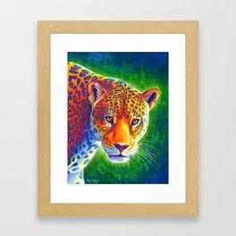 Light in the Rainforest Framed Art Print
