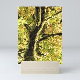 Maple Divine Mini Art Print