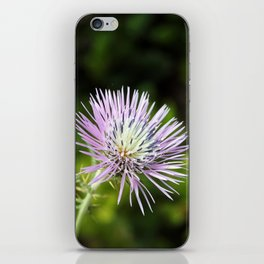 A Thousand Strings iPhone Skin