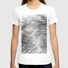 Tree Silhouette Series 5 T-shirt