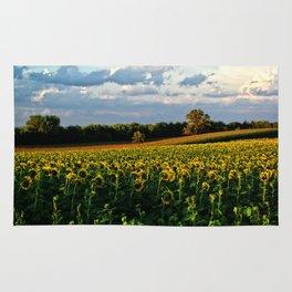 Summer sunflower field Rug