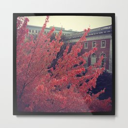 Library in Red Metal Print