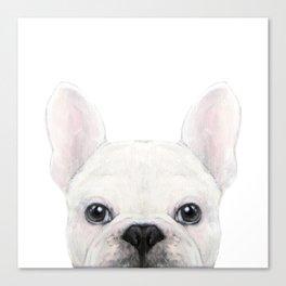 French bulldog white Dog illustration original painting print Canvas Print