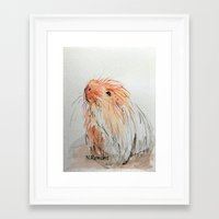 guinea pig Framed Art Prints featuring Guinea pig by N.Romano