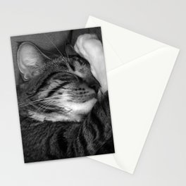 Tiger in my bed Stationery Cards