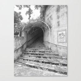 Hidden Places Canvas Print
