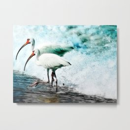 Ibis Splash Metal Print