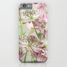 Pink Astrantia Flowers iPhone 6s Slim Case
