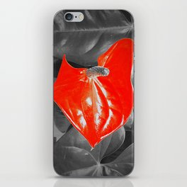 Anthurium iPhone Skin