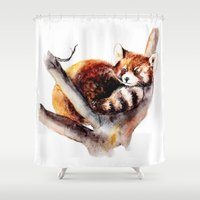 red panda Shower Curtains featuring Red Panda by Anna Shell