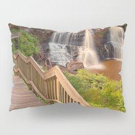Winding Blackwater Falls Pillow Sham