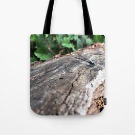 Co-Creating with Dragonfly Tote Bag