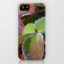 Strawberry frost iPhone Case