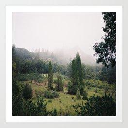 (fog meadow) Art Print