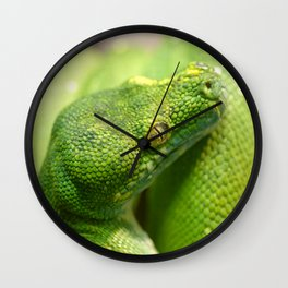 Green snake Wall Clock