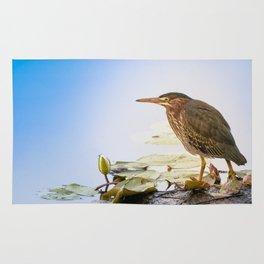 Crowned Night-Heron- Hammond pond Rug