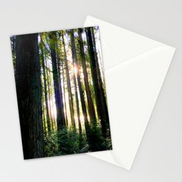 Forest Sunlight Stationery Cards