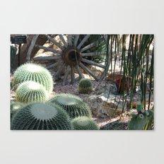 Cacti Farm Canvas Print