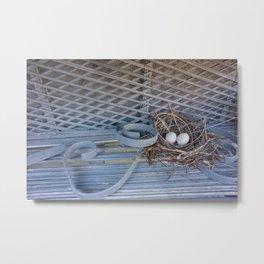 Florida Nest Metal Print