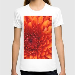 Chrysanthemum T-shirt