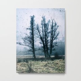 Bare Winter Trees Metal Print