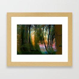 Trippy Trees Framed Art Print