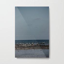 Seagulls island Metal Print
