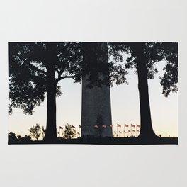 Flag ring around the Washington Monument Rug