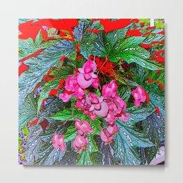 RED ART ANGEL WING PINK BEGONIA FLOWERS Metal Print