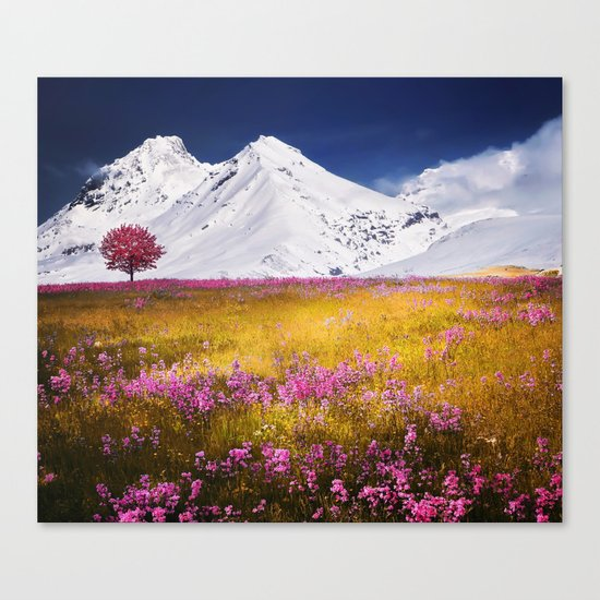 When Flowers Bloom And The Mountains Froze Canvas Print