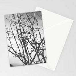 Three (Hazy Eyes) B&W Variant Stationery Cards