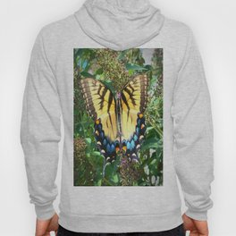 Butterfly Nature Flowers Photography Print Hoody