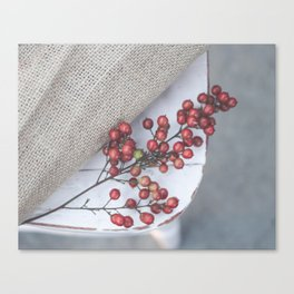 Berries on chair Canvas Print