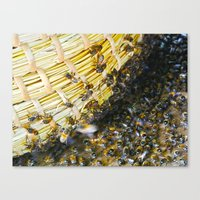 bees Canvas Prints featuring Bees! by Creative Lore