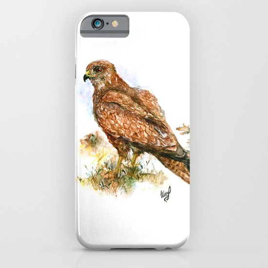 Young hawk iPhone & iPod Case