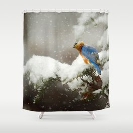 Winter Bluebird Shower Curtain