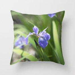 Longwood Gardens - Spring Series 234 Throw Pillow