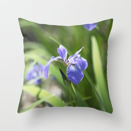 Longwood Gardens - Spring Series 234 Throw Pillow