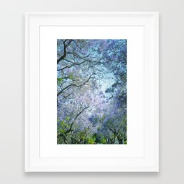 Jacaranda Canopy Framed Art Print