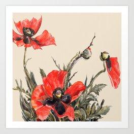 A poppy forever Art Print