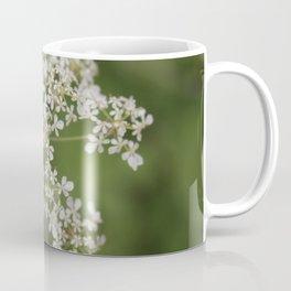 Anthriscus sylvestris Coffee Mug