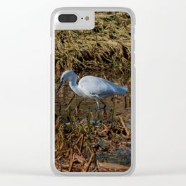 Little Egret or White Heron Clear iPhone Case