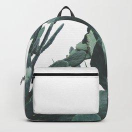 Fruit Cactus Desert Backpack